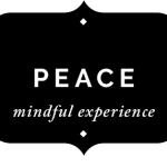 Peace Mindful Experience Sparkle with Sara Values