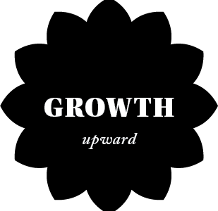 Growth Upward Toward the Light Sparkle with Sara Values
